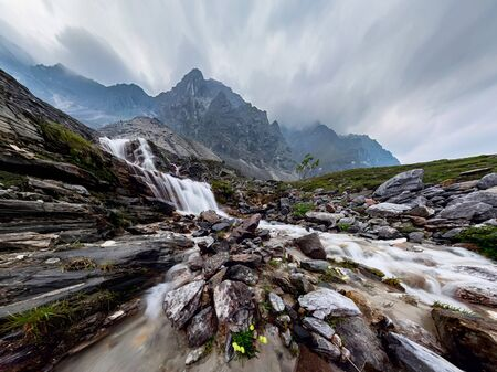 Mountain waterfall stream in misty rainy weather in the valley flowers
