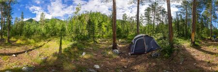 camping tent panorama in green summer forest at sunrise. Cylindrical panorama 360