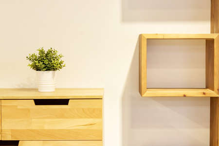 Green plant in white pot decorating modern wooden dresser and square wooden shelf