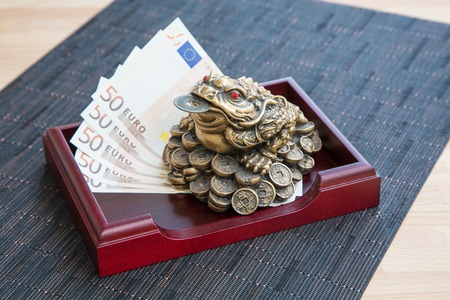 Money frog and euro banknotes  on the wooden table photo