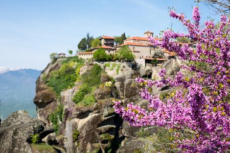 kalambaka: Branch of pink cherry blossom and unfocused Great Meteoro Monastery in Meteora rocks in Kalambaka, Trikkala, Greece on the background