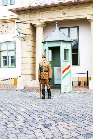 Budapest, Hungary - March 29, 2015: The Guard near the Presidential Palace in Budapest, Hungary.
