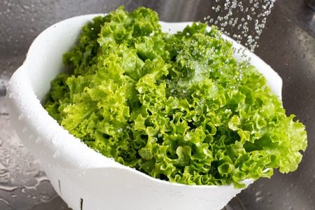 freezed: Fresh vibrant green lettuce rinsed with water in the white colander at the kitchen sink
