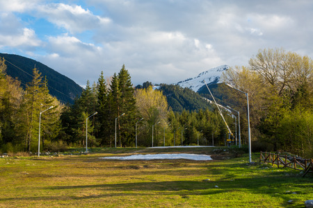 sprung: Spring has sprung.  Melting last snow and vibrant green trees at the pathway. Snowy mountains far away