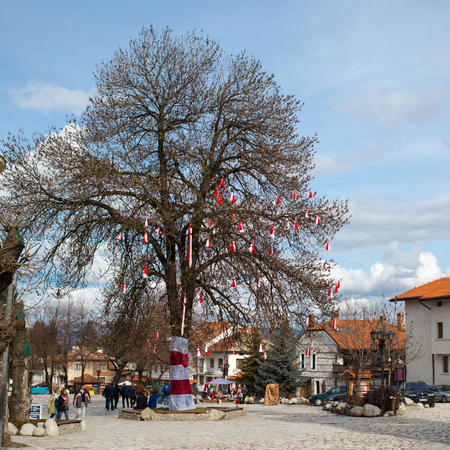 traditional custom: Bansko, Bulgaria - February, 26, 2015: Many Bulgarian traditional custom spring sign Martenitsa on the tree