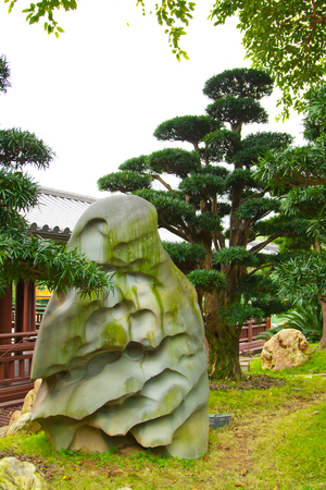 scenary: Stone and bonsai tree.  Chinese or japanese traditional park background Stock Photo