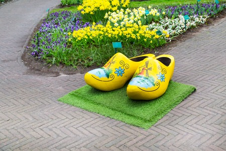 klompen: Typical yellow dutch wooden clogs or klompen, painted with windmill and flowerbed behind