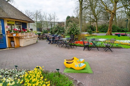 klompen: Lisse, Netherlands - April 4, 2016: Typical yellow dutch wooden clogs or klompen, painted with windmill and Keukenhof park view