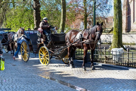 belgian horse: Bruges, Belgium - April 10, 2016:  Fiaker with brown horse waiting for tourists in popular belgian destination Brugge, Belgium Editorial
