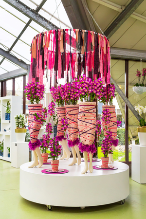 floristic: Lisse, Netherlands - April 4, 2016: Flower greenhouse orchid pavillion, floristic decor elements in dutch park spring garden Keukenhof, Lisse, Holland Editorial