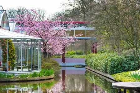 lisse: Lisse, Netherlands - April 4, 2016: Pavillion Willem Alexander and flower blossom in dutch park spring garden Keukenhof, Lisse, Netherlands