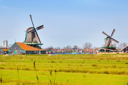 Panoramic view of windmills in Zaanse Schans, traditional village in Holland, reflection in lake, blue sky, copy space
