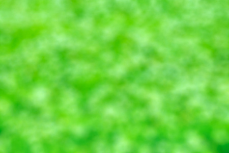 Abstract bright vibrant green bokeh texture background