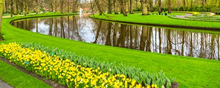 Flowerbed with tulips and daffodil flowers blooming in spring garden and river view