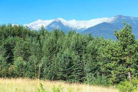 balkans: Summer panorama of georgeos Pirin mountains landscape with pine trees and high peaks, Bansko, Bulgaria Stock Photo