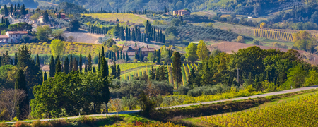 Tuscan panoramic banner landscape with vineyards, cypress trees, houses in Tuscany, Italy, Europe