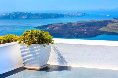 Santorini island, Greece architecture, caldera blue sea panorama and colorful plants