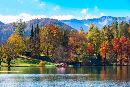 Bled, Slovenia panoramic sunset view of Lake and autumn colorful trees background in julian alps mountains 免版税图像