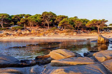 Vourvourou, Sithonia, Greece, Halkidiki, mediterranean landscape of Karidi sandy beach with stones and pine trees Banco de Imagens