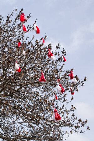 Many Bulgarian traditional custom spring sign Martenitsa on the tree, Bansko, Bulgaria