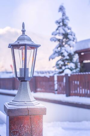 Christmas lantern, winter landscape after snowfall, pine tree and snow in Bansko, Bulgaria