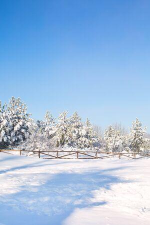 Panorama invernale di Natale o Capodanno con alberi di pino della foresta di neve e recinzione in legno Archivio Fotografico