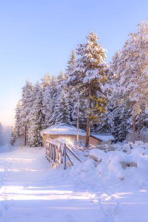 Winter ski resort Bansko, Bulgaria, ski slope with bridge in the forest, pine trees view