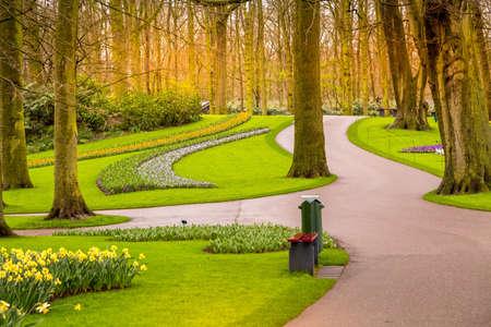 Multicolored flowers landscape in Keukenhof, Netherlands