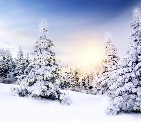 winter wonderland: Bellissimo paesaggio invernale montagna al tramonto in raggi di luce del sole. Illustrazione, di auguri, poster, spazio per il testo