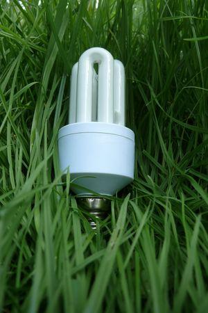 Energy eko bulb photo