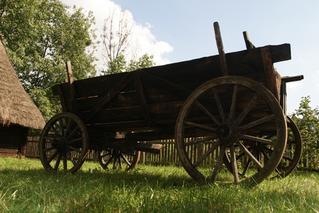Old wood cart on grass photo