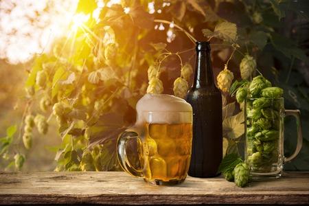 hopfield: glass of beer with hop cones weather, wooden Stock Photo