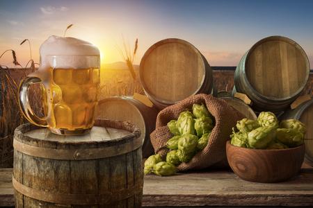 hopgarden: glass of beer with hop cones in the hop field
