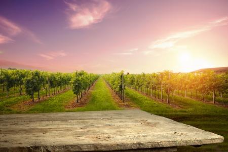 wine road: Chianti vineyard landscape in Tuscany, Italy, farm Stock Photo