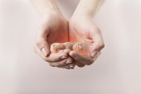 Het embryo in de handen van een vrouw. Conceptembryo en abortus Stockfoto