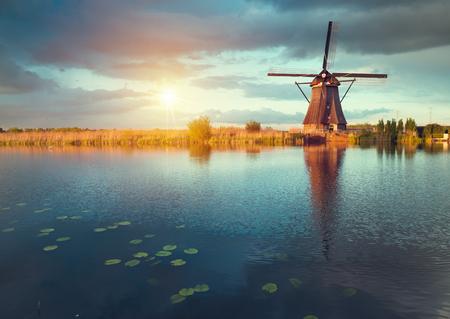 Landschap met tulpen, traditionele nederlandse windmolens en huizen in de buurt van het kanaal in Zaanse Schans, Nederland, Europa.