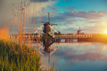 Landscape with tulips, traditional dutch windmills and houses near the canal in Zaanse Schans, Netherlands, Europe