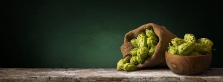 brewery: Still life with a keg of beer and hops.
