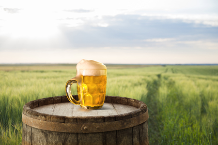 Glass of beer with foam, fresh green hops, ears of barley and grains in bag on table against golden field on sunset