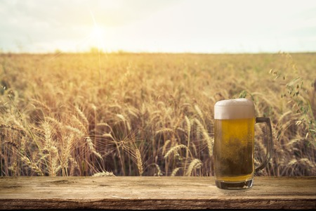 Beer keg with glasses of beer on rural countryside background.