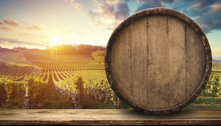 Vino tinto con barril en viñedo en verde Toscana, Italia