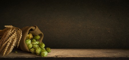 Hop twigs frame over wooden cracked table background. Vintage toned. Beer ingredients. Beautiful fresh-picked whole hops with green leaves border design close-up. Brewing concept, Vertical image 写真素材 - 119779200