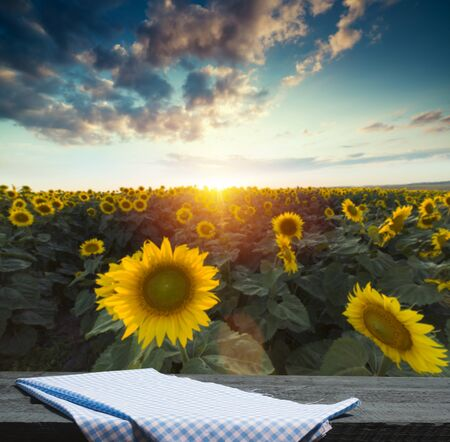 Empty wooden plank with Sunflower field background Reklamní fotografie