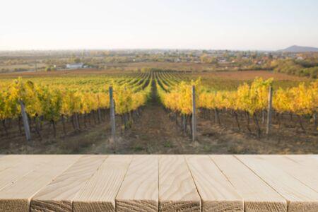 paysage ensoleillé de vignoble avec des feuilles vertes et des bouteilles de vin sur table