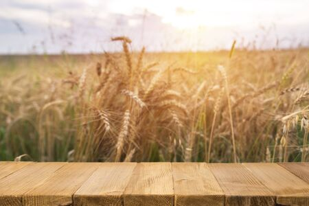 autumn background with free place on wooden table for your decoration. wheat field landscape and wood floor,empty wooden table with wheat field background, landscape and desk of free space Stock fotó
