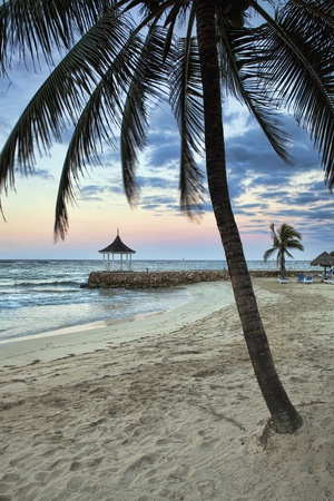 Morning on a beautiful Caribbean beach with palm trees photo