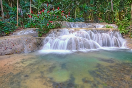 Tropical landscape of Jamaica, Caribbean Stock Photo - 14249991