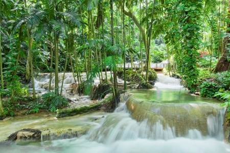 Enchanted gardens in Ocho Rios, Jamaica photo