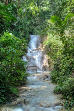 Beautiful waterfall in Ocho Rios, Jamaica photo