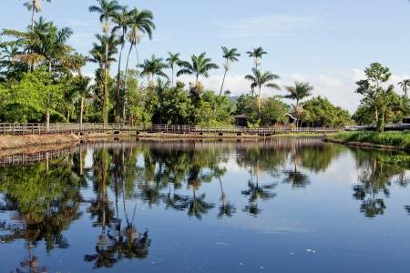 Paradise like landscape in Jamaica Stock Photo